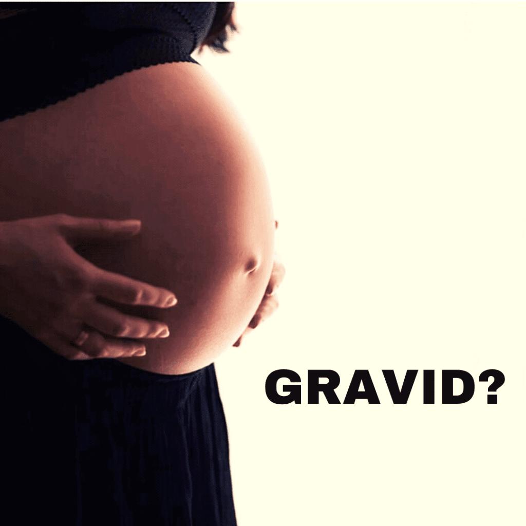 Gravid?